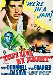 Постер Они живут по ночам