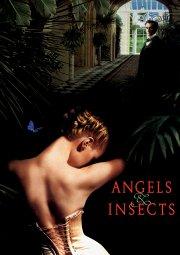 Постер Ангелы и насекомые