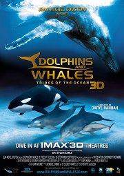 Постер Дельфины и киты 3D