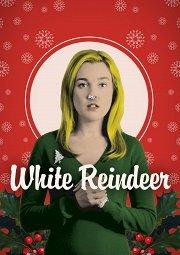 Постер Белый олень