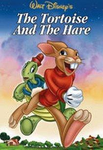 Черепаха и заяц