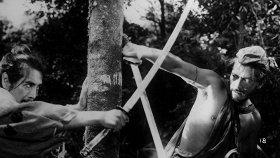 36 лучших фильмов про самураев