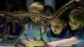 Музеи, в которых можно отметить день рождения ребенка