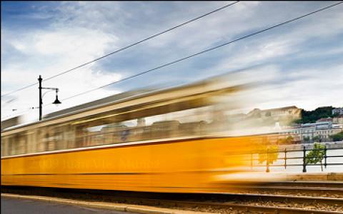 Трамвай до аэропорта «Домодедово» будет стоить 100 рублей
