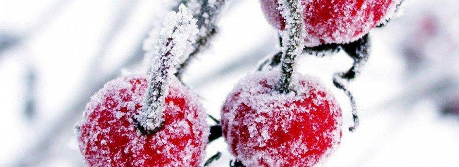 Кино: «Зимняя вишня-2»