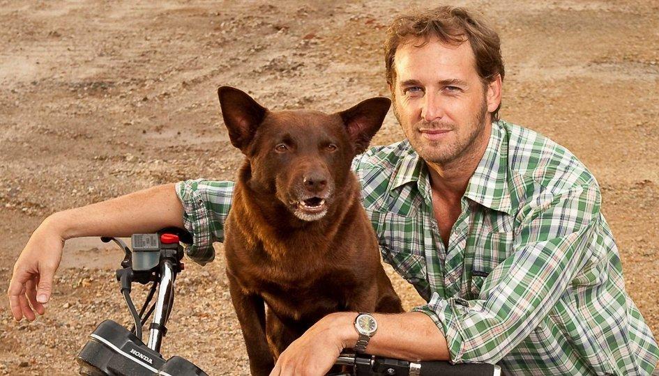 Кино: «Рыжий пес»