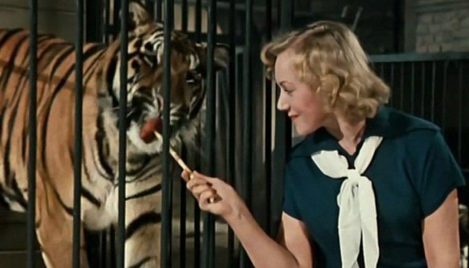 Кино: «Укротительница тигров»