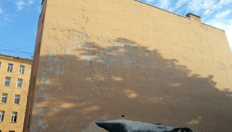 Выставки: Стас Багс. Клуб дайвинга «Дельфин»