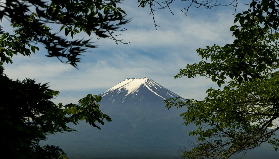 Кино: «Ван Гог и Япония»