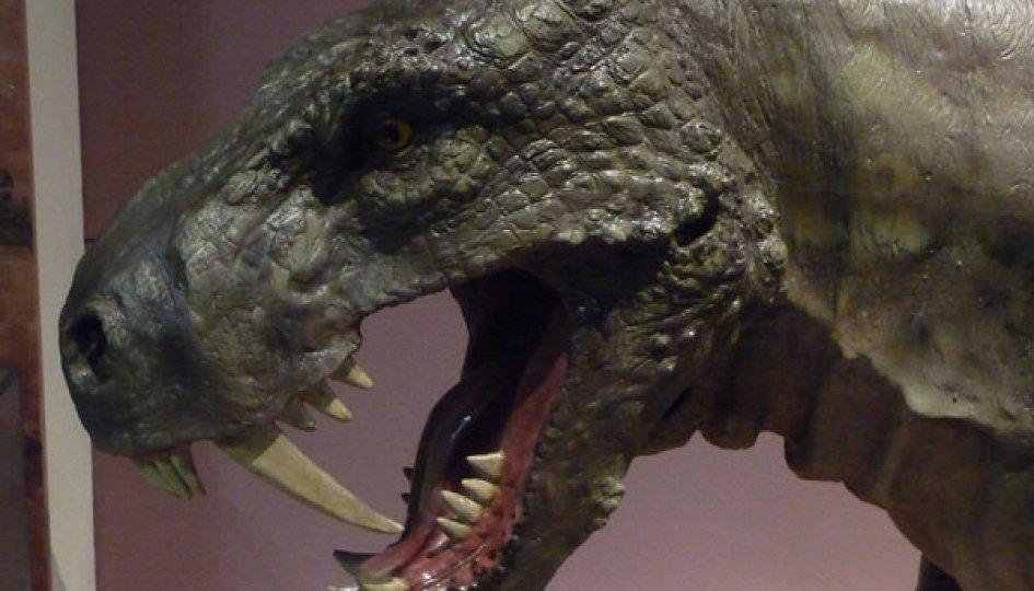 Выставки: Эпоха зверообразных ящеров