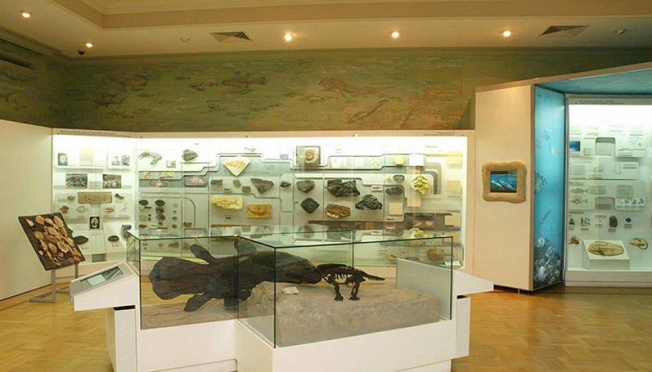 Выставки: Царство рыб и земноводных