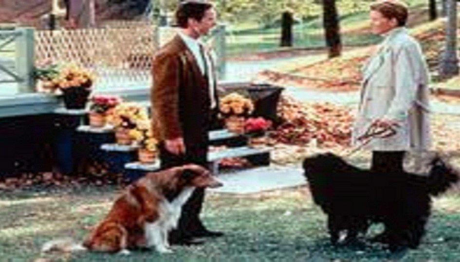 Кино: «Собачий парк»