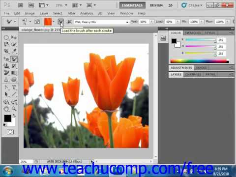 Preset Manager in Photoshop and Photoshop Elements