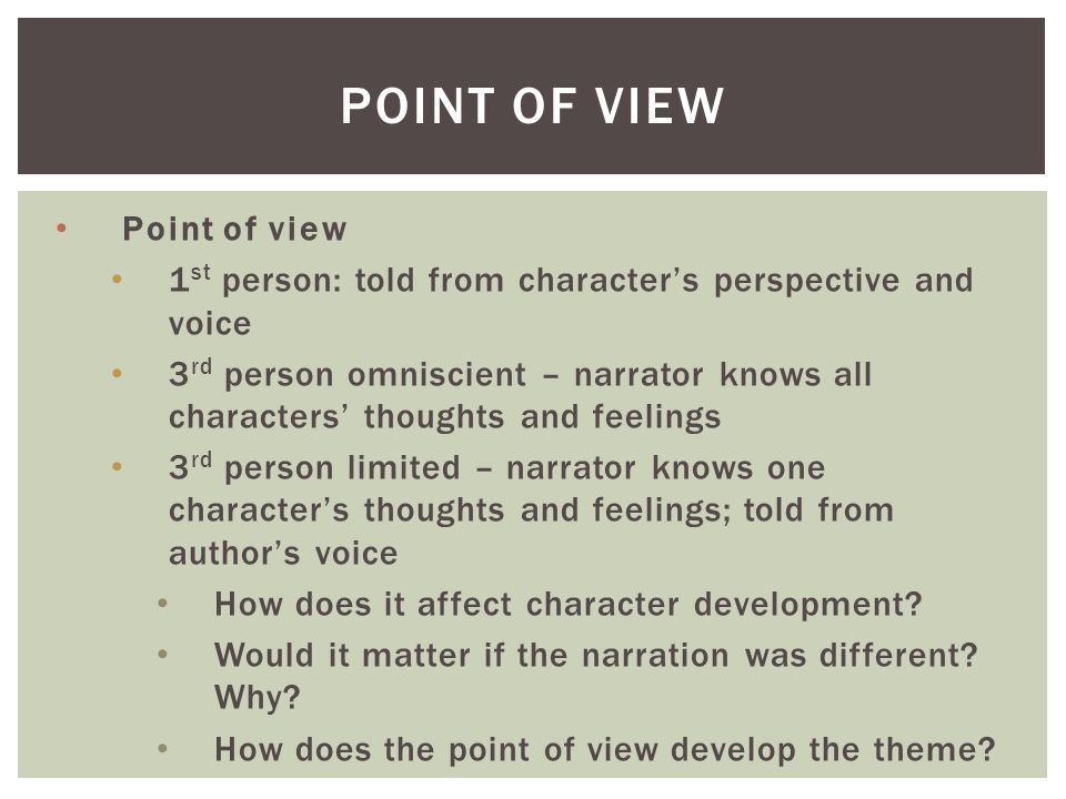 Essay point of view