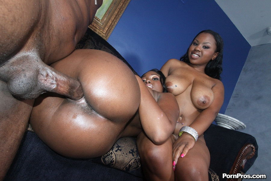 Sexy bbws black eats white meats