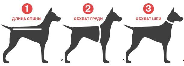 Размер одежды для собак на алиэкспресс на русском