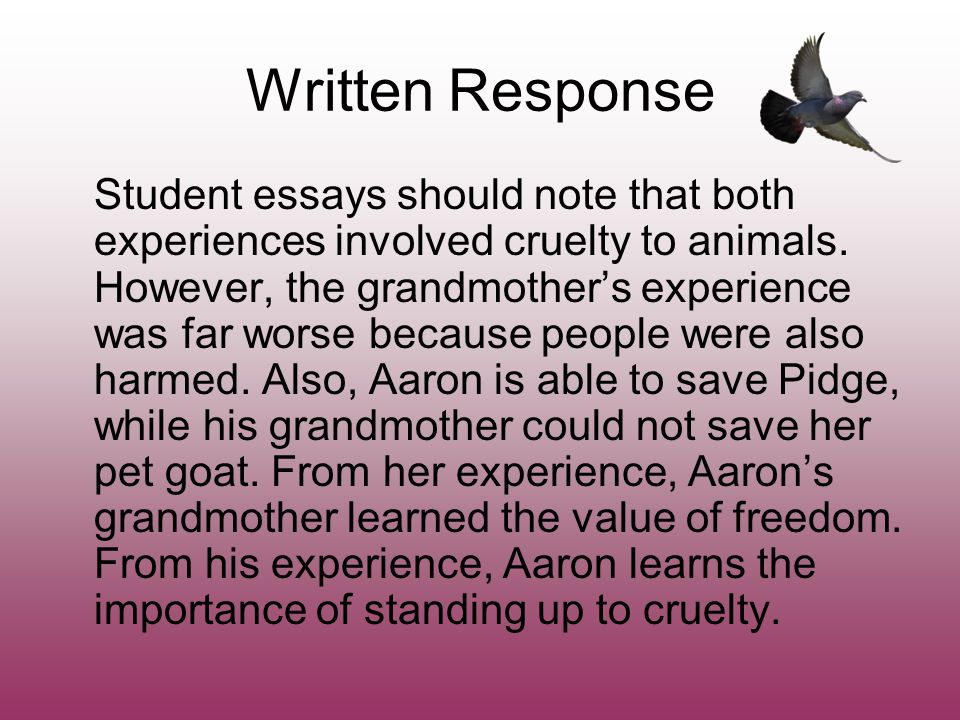 Write my animal cruelty essay topics