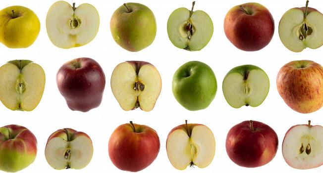 Гид по сортам яблок