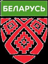 Сборная Беларуси по хоккею — Сборная Норвегии по х...