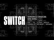 «Switch at Aglomerat»: Veronica Vasicka & Das Ding