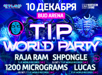 «T.I.P. World Party 2016»: Raja Ram, Spongle, 1200micrograms, Lucas, Z-Cat, Crazy Astronaut, Proto, [AD] Flash