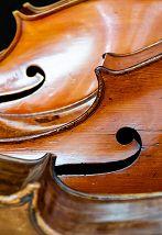 Музыка Моцарта и Баха (с посещением экспозиции)
